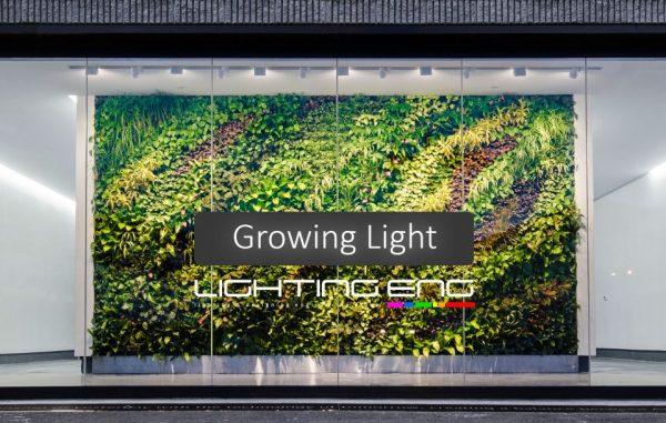 نور مصنوعی رشد گیاه