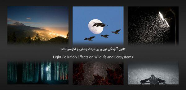 آلودگی نوری | آلودگی نوری چیست | نورپردازی اصولی | محاسبات روشنایی | مهندسی روشنایی